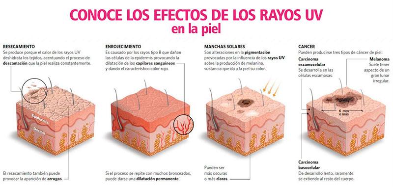 El número de la crema de protección solar indica el factor de protección solar (FPS). El factor de protección solar indica el nú