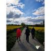 Rutas saludables - Bosque de Quejigos Zabalgana (Anillo verde Vitoria-Gasteiz) - 19 de octubre